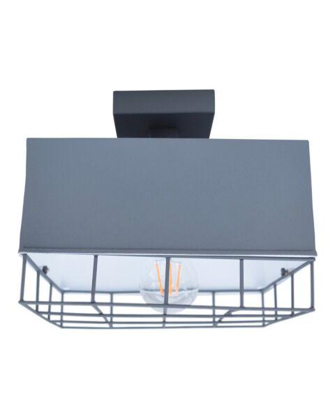 Industriële Plafondlamp Cage Vintage Grey