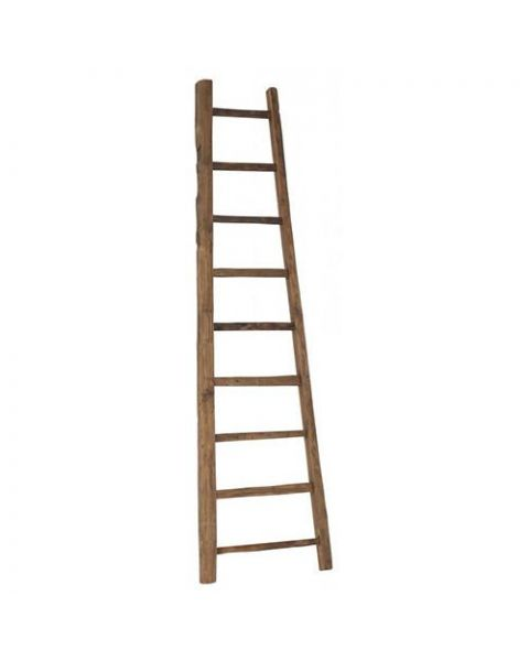 D-Bodhi Solo Ladder Hoog Small