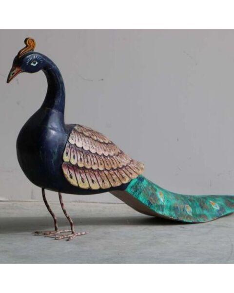houten pauw india